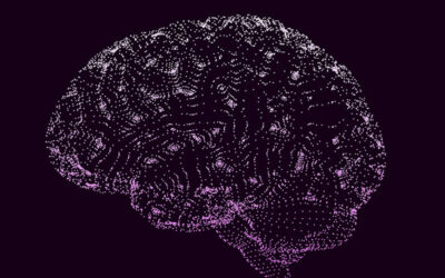 How Our Powerful and Beautiful Mind Works